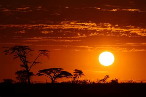Living and Working in Africa - Expat Network