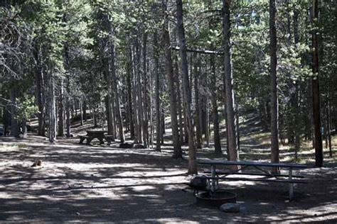 Canyon Campground Information, Map, Pictures, and Videos