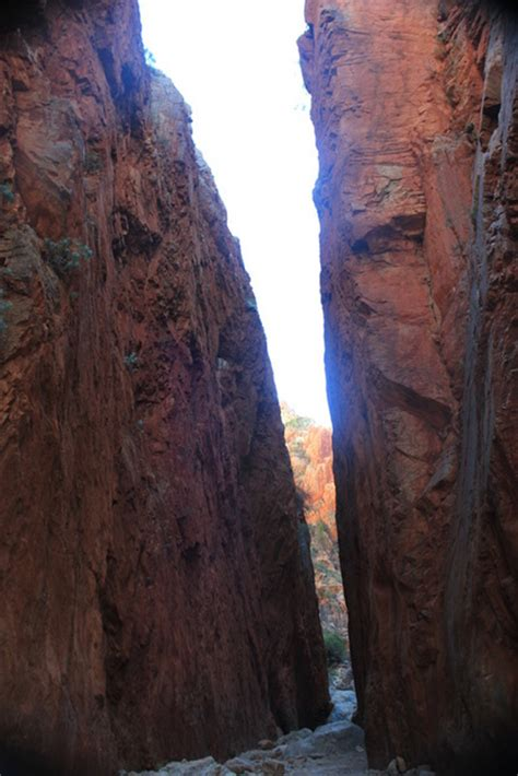 Standley Chasm camping review and information