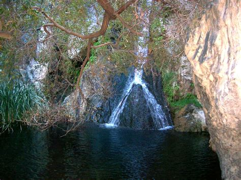 Tiny oasis of Darwin Falls in the middle of Death Valley